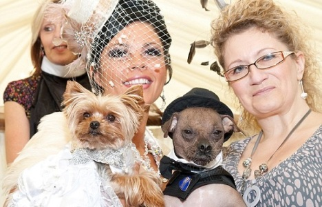 The most expensive wedding in the UK was also the furriest one