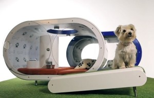 Samsung designs the Dream Doghouse for Crufts