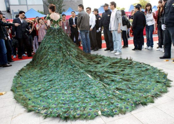 World's Most Expensive Wedding Dresses