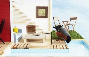 Luxurious bird house
