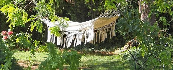 A hammock in the garden