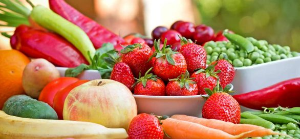 Diet Options to a Healthier Lifestyle